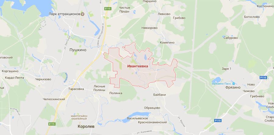 Заборы в Ивантеевке