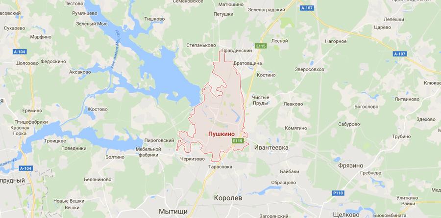 Заборы в Пушкино
