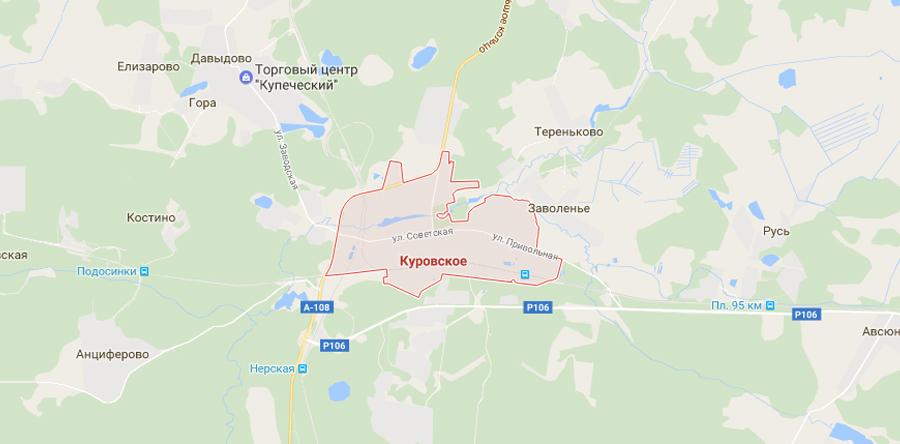 Заборы в Куровском